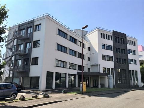 Location Bureaux SCHILTIGHEIM - Photo 1