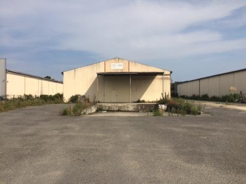 Location Activités Entrepôts SAINT LOUBES - Photo 1