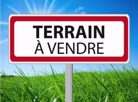 Vente Investisseur Terrain SAINT LOUIS DE MONTFERRAND - Photo 1