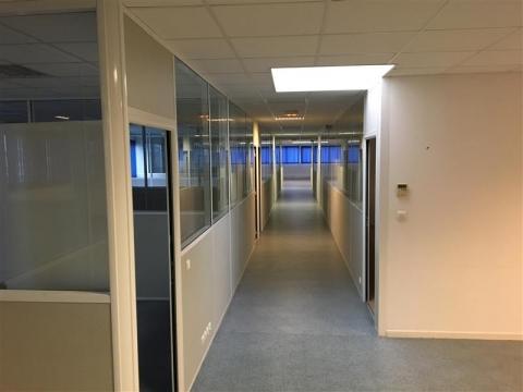 Location Bureaux LE HAILLAN - Photo 3