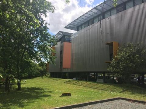 A LOUER - BUREAUX - 791 m²