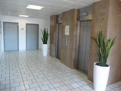 Location Bureaux TOULOUSE - Photo 6