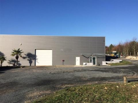 Location Activités Entrepôts SAINT SULPICE - Photo 1